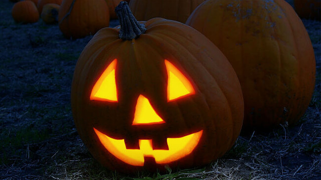 Mopinion: 3 Ways Online Feedback Can Prevent a Scary Customer Experience - Pumpkin