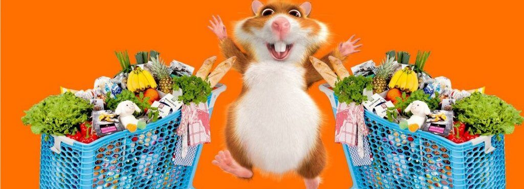 Mopinion: Albert Heijn caters closely to online shoppers' needs with customer feedback - Hamster