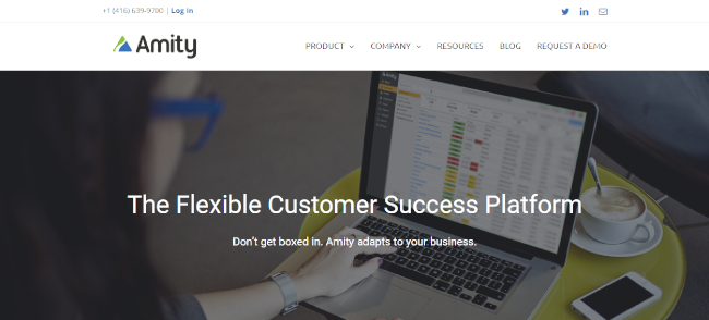 Mopinion: Top 10 Customer Success Software - Amity