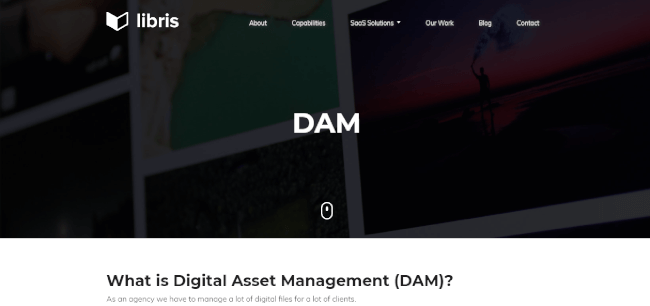 Mopinion: Top 20 Digital Asset Management (DAM) Software - Libris DAM