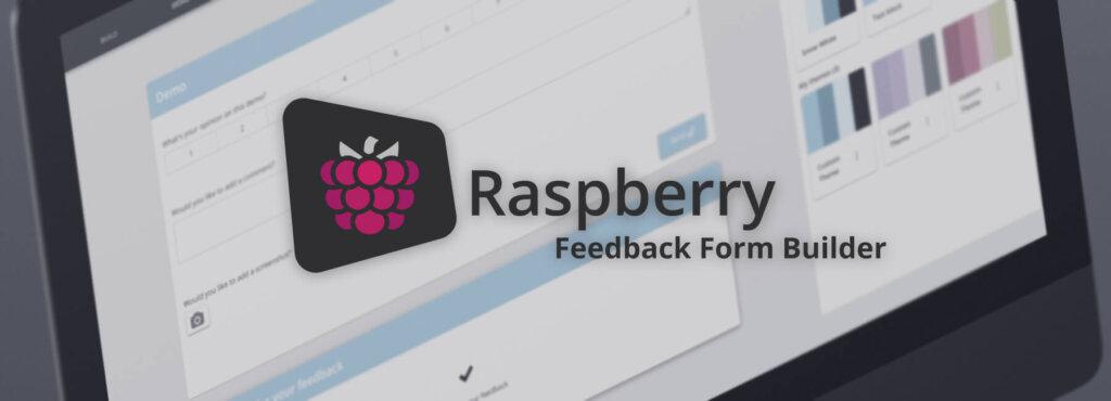 raspberry_blog_header_form_builder_2