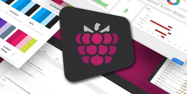 Mopinion raspberry banner