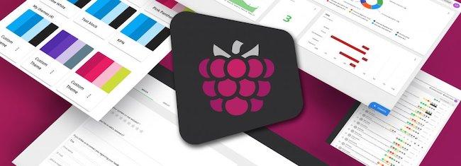 Interface Mopinion Raspberry - image