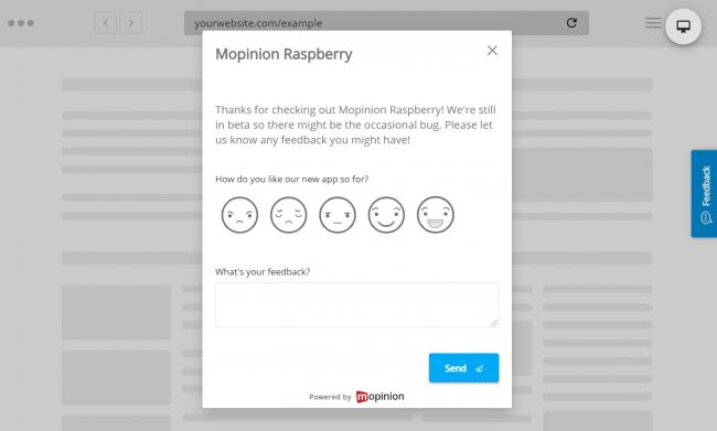 Mopinion Raspberry product feedback
