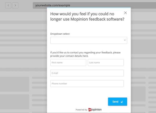 Product strategy feedback